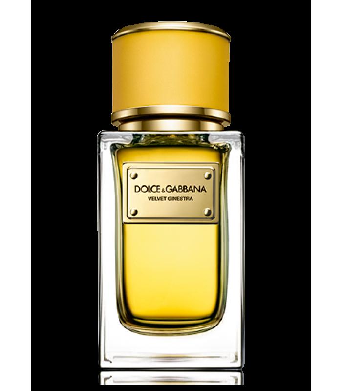 Картинка Dolce&Gabbana Velvet Ginestra купить духи